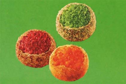 BIO Today - Veggie Balls